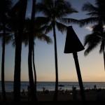 【ハワイアン】 イズ ことイズラエル・カマカヴィヴォオレの声が最高なので聞いてくれ!