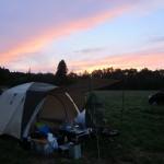 【 キャンプ道具 8.3万円分】キャンプ歴4年の私が今まで買った キャンプ道具 大公開!