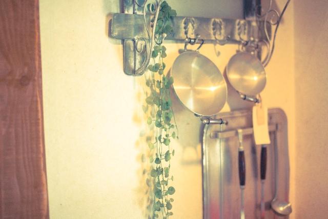 キッチンツールと植物